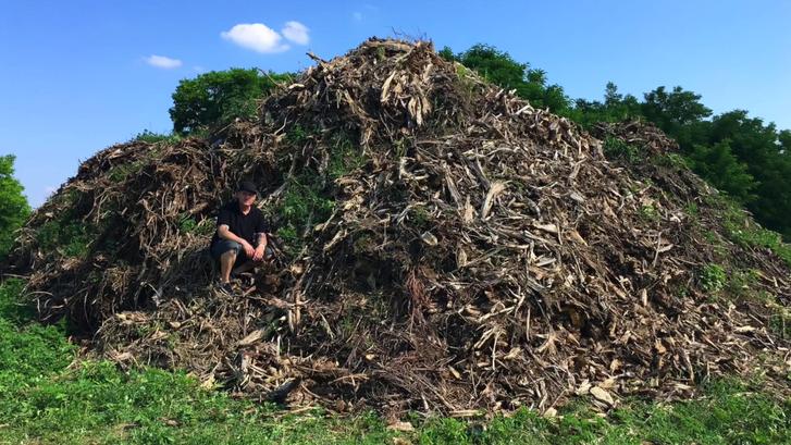 Téglás Zoltán a kivágott fák gyökereiből emelt kisebbfajta domb oldalában. Azt mondja, van vagy harminc ilyen.