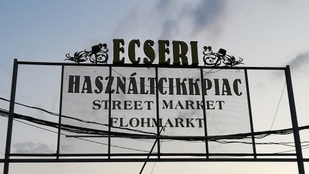 Hitler-festmény és kitömött medve eladó: egy reggel az Ecseri piacon