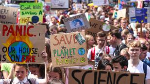 Faölelgető hippikből történelmi csúcsra: berobbantak a politikába a zöldek