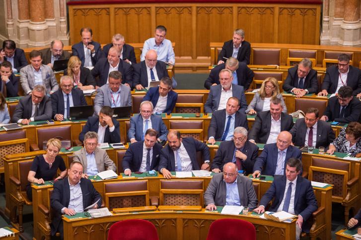 Fideszes képviselők szavaznak a 2020. évi költségvetés módosítását célzó javaslatról az Országgyűlés plenáris ülésén 2019. július 8-án.