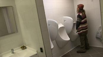 Átadták Budapest legdrágább vécéjét