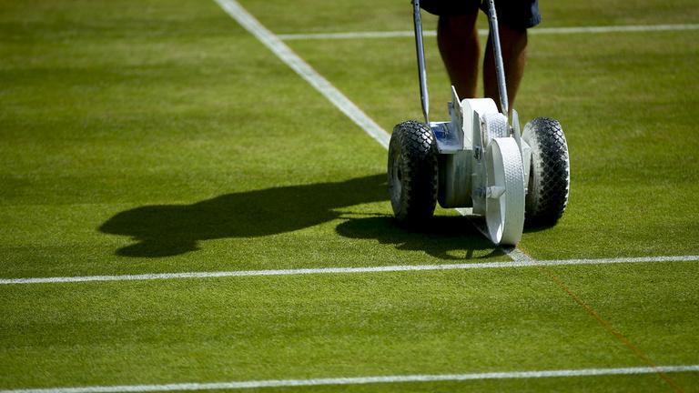A fű arra való, hogy a tehenek megegyék, nem teniszezésre!