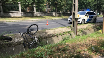 Sisak nélkül hajtott árokba a Budakeszi úton a bringás, a helyszínen meghalt