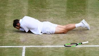 190 km/h-s labdával találták fejen Mahut-t a Wimbledoni döntőben