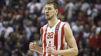 Autóbalesetet szenvedett, mesterséges kómában tartják az NBA-győztes szerb kosarast