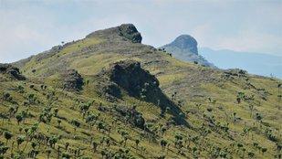 Az Aberdare-hegység Kenyában