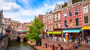 Utrecht méhbaráttá alakította a buszmegállóit