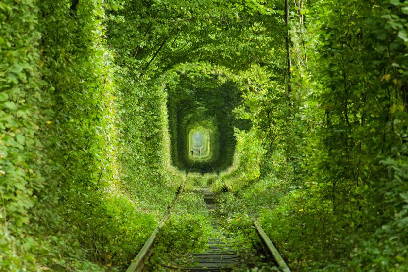 Tündérmesébe illik a Szerelem alagútja: 5 kilométert sétálhattok a zölddel benőtt vágányokon