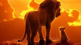 A 2019-es oroszlánkiráj így, pontos jével