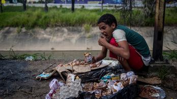 Az emberiség 11 százaléka nem jut elegendő táplálékhoz