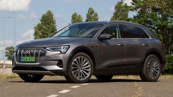 Féltempóval halad a villany-Audi gyártása