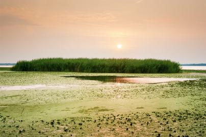 TIsza folyó legendája, tündér, eredet történet