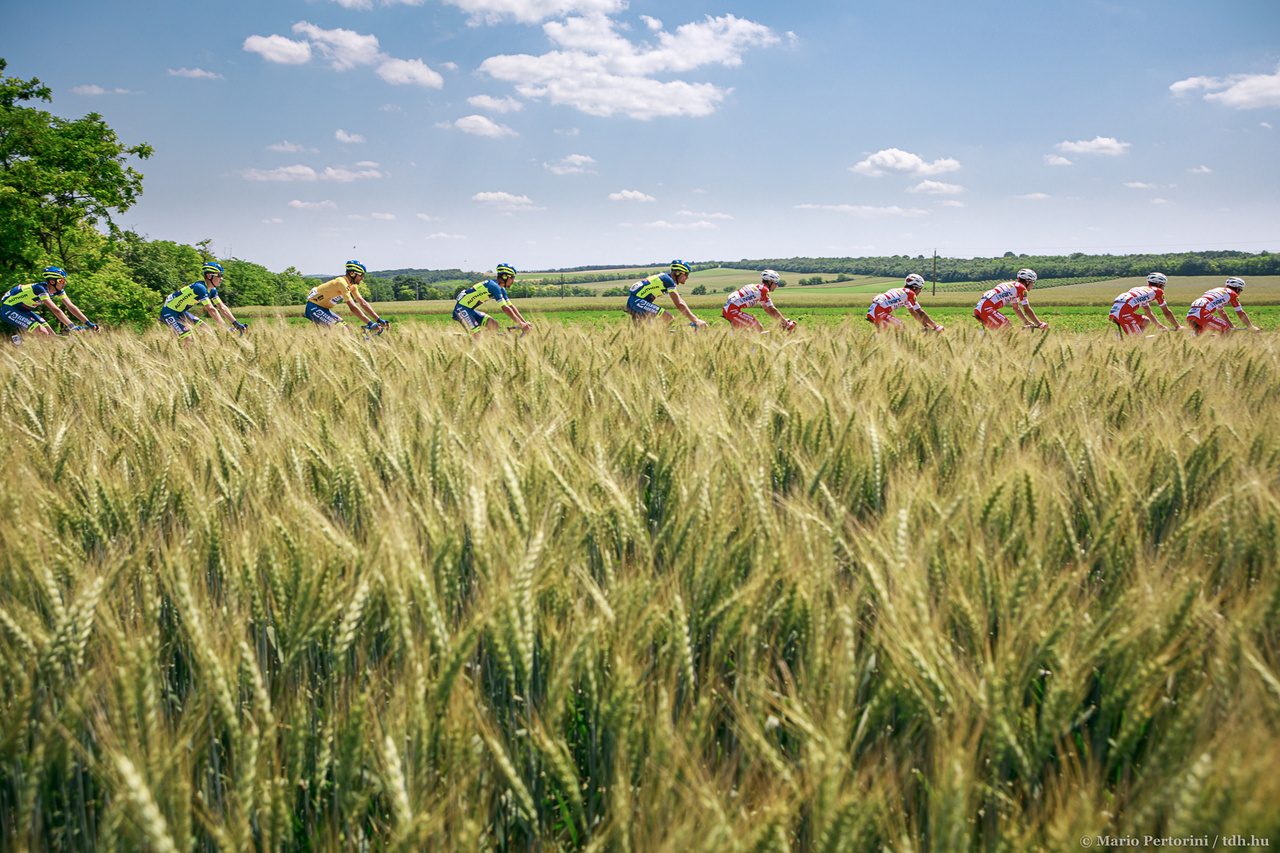 Aranyba forduló búzakalász, kék ég, közötte a suhanó mezőny. Kihagyhatatlan kompozíció az első szakaszról.