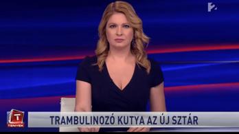 Kettébontják a Tényeket, rövidebb lesz az RTL Híradó