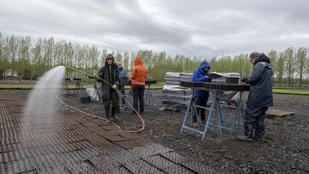 Ezer év után hozzák helyre Izlandon a vikingek erdőpusztítását