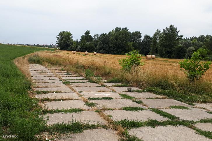 Törökbálint felé egy szántón vezet majd az út, egyelőre egy meredek emelkedőn kell kerülni