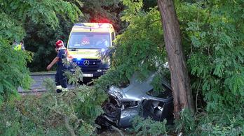 Fának hajtott, meghalt egy kisbusz sofőrje Kunszentmártonnál