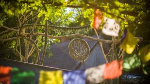Örömtáncot jártunk a magyar kender körül a Zengető Fesztiválon