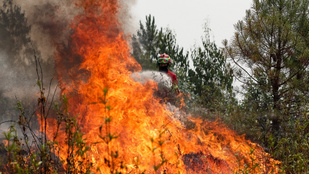 Egy 55 éves férfi okozhatta a Portugáliában pusztító erdőtüzeket