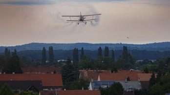 Jó hírek a szúnyogfrontról: a rovarrajok visszavonultak