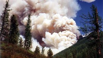 Egymillió hektár erdő lángol Szibériában