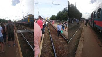 Káosz alakult ki a Budapest-Szolnok vonalon, Rákos állomáson ragadt sok utas