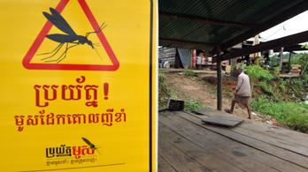 Rezisztens malária terjed Délkelet-Ázsiában