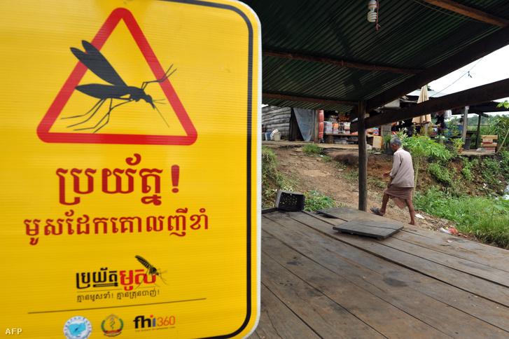 Maláriával fertőzött szúnyogveszélyre figyelmeztető tábla Kambodzsa Pailin tartományában, 2012-ben. Most ismét feltűnt egy változata a maláriát okozó parazitának, ami ellenáll az általánosan használt gyógyszereknek.