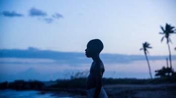 A Torinói ló is bekerült az 2010-es évek legjobb 100 filmje közé