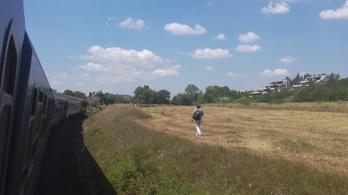 A szerda sem a MÁV napja: Balatonfüred előtt lerobbant egy sebesvonat