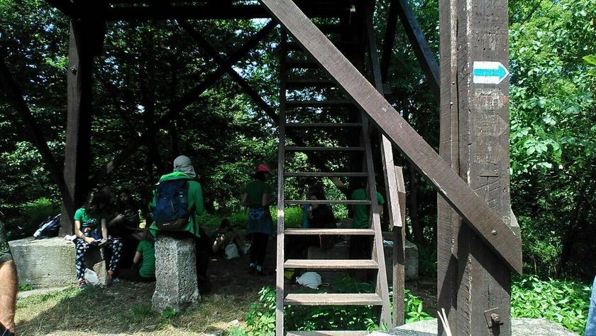 erdei-vandortaborok-bakony-koris-hegy