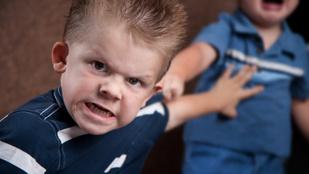 Honnan ered a gyermeki agresszió?