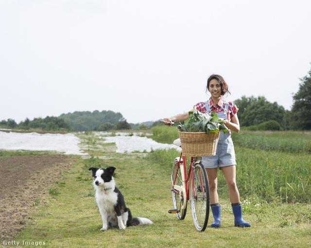 Bicikli is van meg kutya is, de ez nem bikejöring