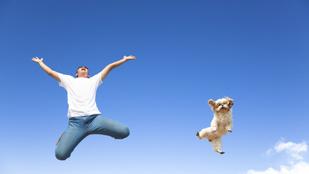 Így sportolj együtt a kutyáddal, hogy mindketten edzettebbek legyetek!