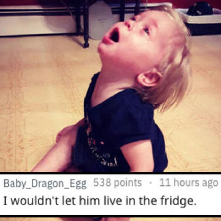 Mert nem lakhatott a hűtőben...