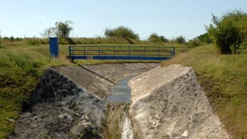 Súlyos szennyezés miatt tömeges halpusztulás történt két mátrai patakban
