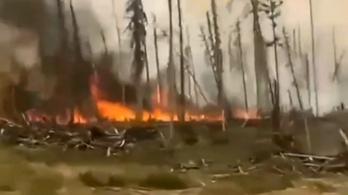 2 millió hektár lángol Szibériában