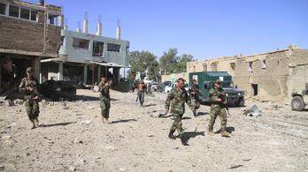 A tálib lázadók csak egy feltétellel hajlandóak az afgán kormánnyal tárgyalni