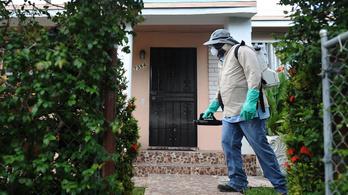 Halálos, agyödémát okozó vírus jelent meg Floridában