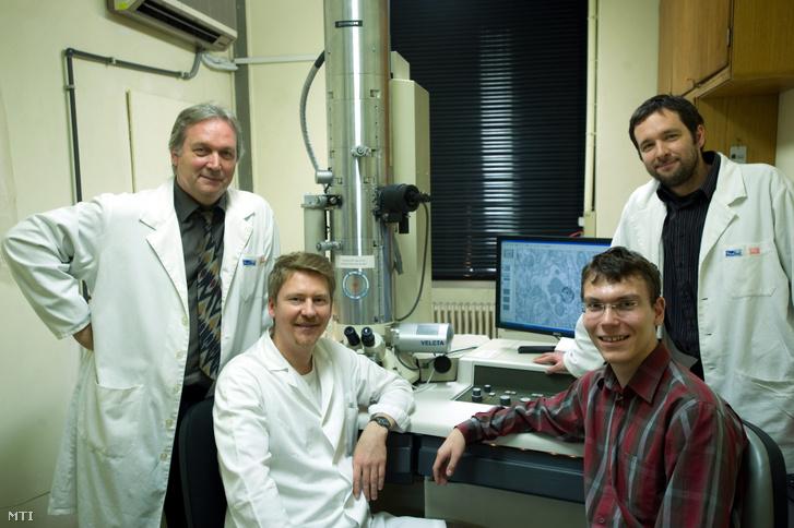 Freund Tamás Agy-díjas neurobiológus akadémikus az MTA Kísérleti Kutatóintézetének igazgatója (b) Nyiri Gábor (b2) és Varga Viktor (j) kutatók valamint Domonkos Andor egyetemi hallgató (b3). A Freund Tamás és Nusser Zoltán akadémikusok által vezetett két idegtudományi kutatócsoport együttesen 52 ötmillió eurós (158 milliárd forint) támogatást nyert az Európai Kutatási Tanács (ERC) pályázatán. Freund Tamás kutatócsoportja amely 27 millió eurós támogatásban részesül az érzelmi és motivációs impulzusokat szállító idegpályák hatásmechanizmusát vizsgálja a tanulási és memóriafolyamatokban.