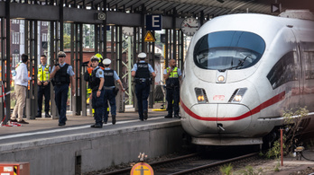Vonat elé lökött egy anyát és 8 éves gyermekét egy férfi Frankfurtban