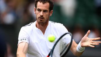 Két héten belül visszatérhet egyesben Andy Murray