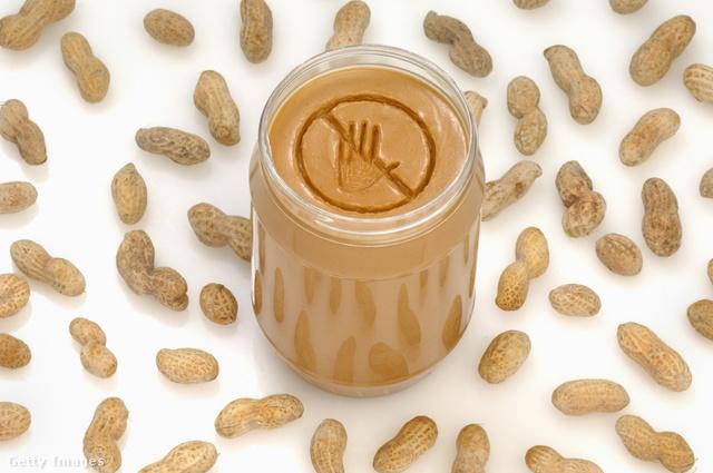 Még nincs meg a pontos megoldás, de jó eséllyel a bélbaktériumokkal védhető ki az ételallergia