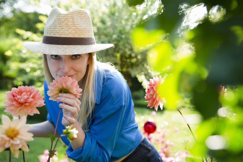 3 könnyen kezelhető növény, ami virágba borítja az erkélyt