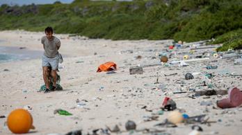 Nemrég érintetlen paradicsom volt, most belefulladhat a műanyagba a Henderson-sziget