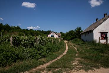 15 szegény kelet-magyarországi faluban van jelen a Polgár András nevéhez köthető, idén tíz éves Kiútprogram, korábban helyi vállalkozások indítását segítették, néhány éve viszont már mindenhol átálltak az uborkázásra.