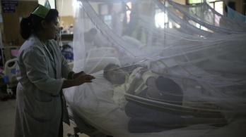 Ázsiában és Amerikában is támad a dengue-láz
