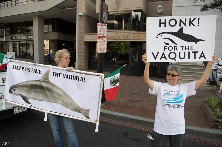 Tüntetők Mexikó washingtoni nagykövetsége előtt, 2018. július 5-én