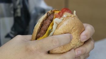 A húsevés jövője megvetette lábát Magyarországon