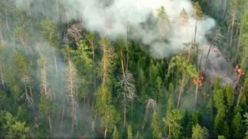 Észak-Amerikát is elérte Szibéria füstje